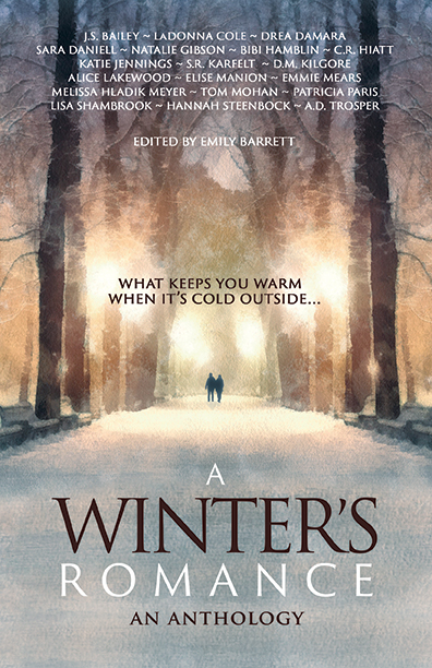A Winter's Romance published by BHC Press