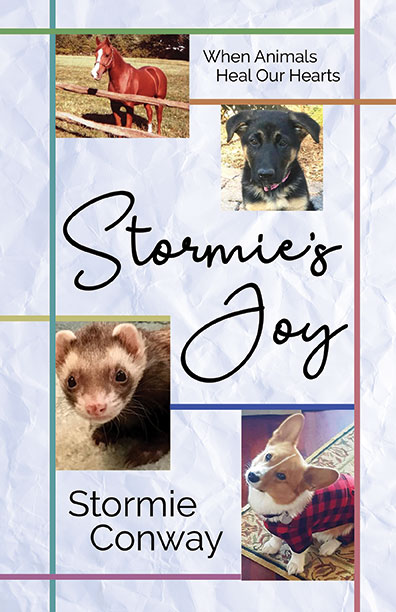 Stormie's Joy by S.C. Conway