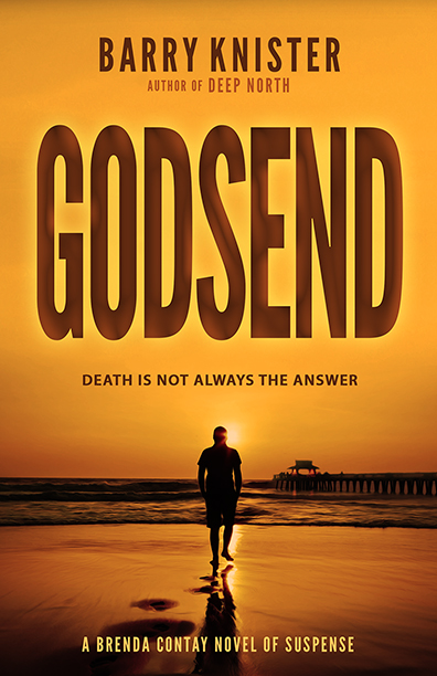 Godsend by Barry Knister